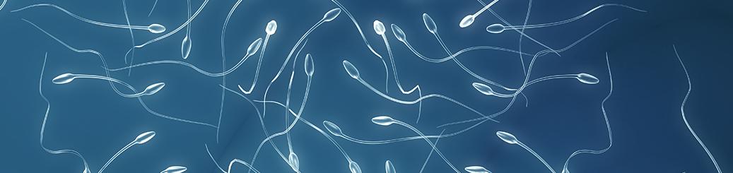 Espermocultivo2